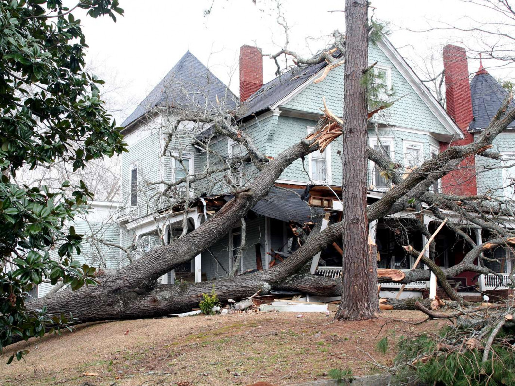 Reverse the Effects of Storm Damage